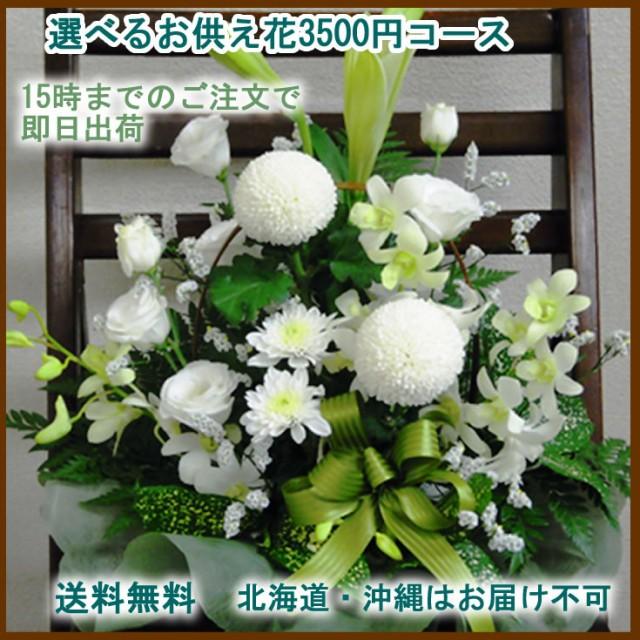 【送料無料】★選べるお供えのお花★3500円コース...