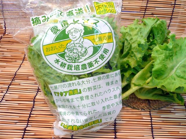 大分産 バタピアレタス[1袋]無農薬水耕栽培の葉...