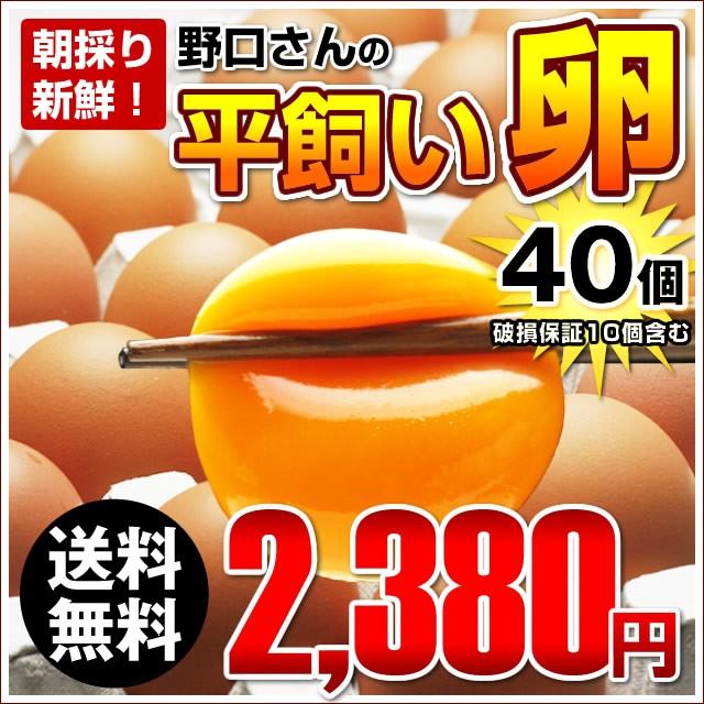 【送料無料】朝採り新鮮野口さんの《平飼い》こだわり卵40個入り(破損保証10個含む)※同梱不可商品※ 俺達の晩餐