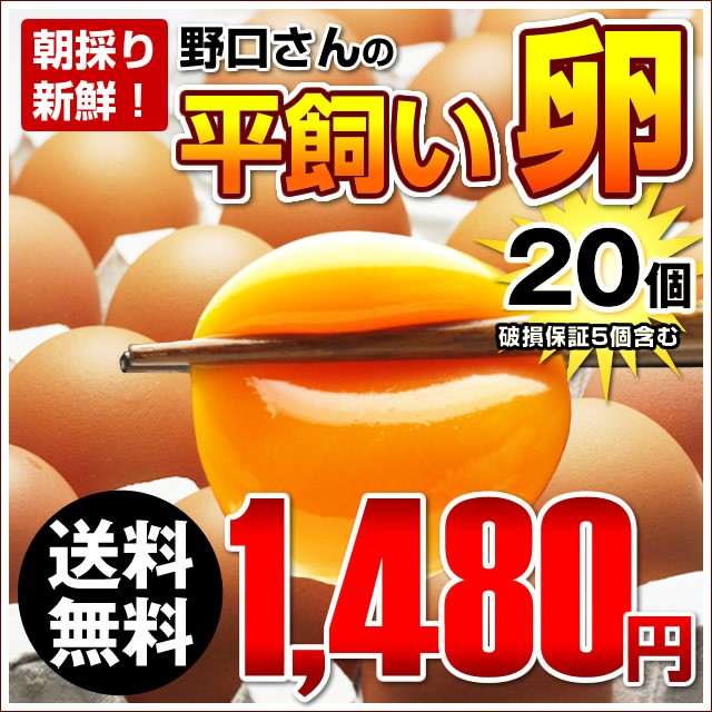 【送料無料】朝採り新鮮野口さんの《平飼い》こだわり卵20個入り(破損保証5個含む)※同梱不可商品※ 俺達の晩餐