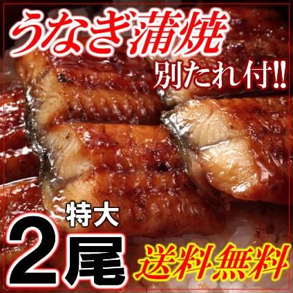 【送料無料】うなぎ蒲焼き2尾セットタレ付《※冷...