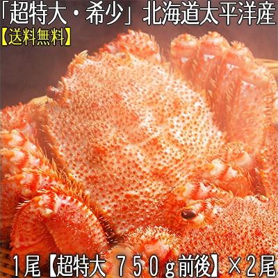 【送料無料】北海道太平洋産 【超特大】 毛ガニ 7...