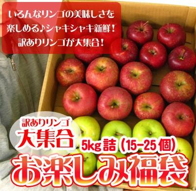 りんご 訳あり 福袋 5kg 青森もしくは北海道産 ...