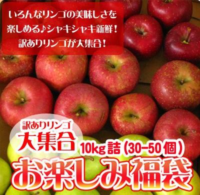りんご 訳あり 福袋 10kg 青森もしくは北海道産 ...