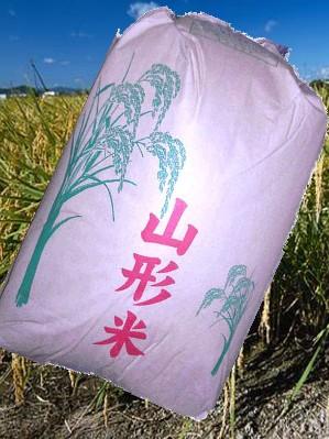 【送料無料】28年産山形県産コシヒカリ精米27kg