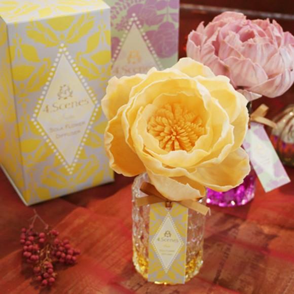 かわいい大きな花が色づく ソラフラワーディフュ...