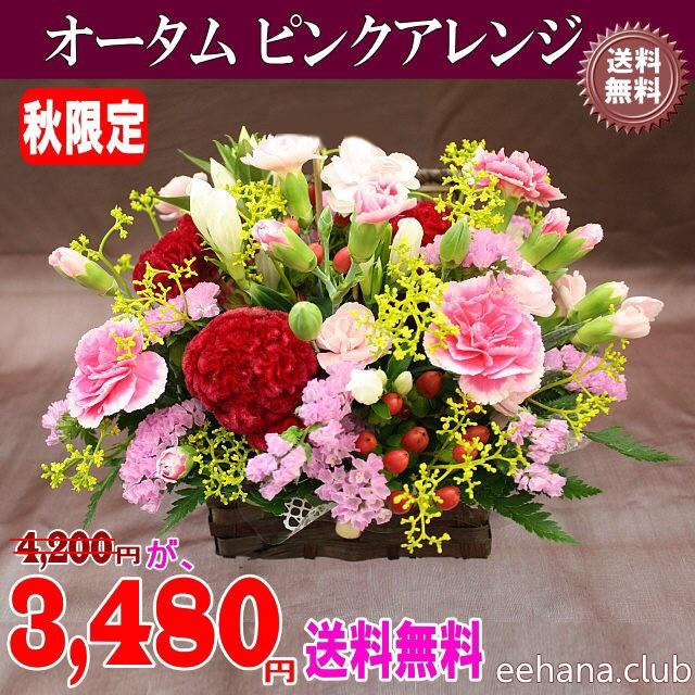 秋限定★オータムピンクアレンジ3,480円【送料無...