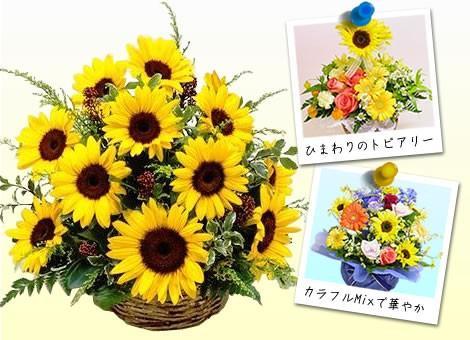 【誕生日】 【花】 【送料無料】★ひまわりのお花...