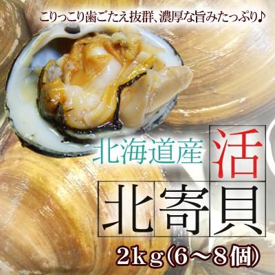 活北寄貝(ホッキ貝)2kg(6-8個) 送料無料 ※沖縄は...