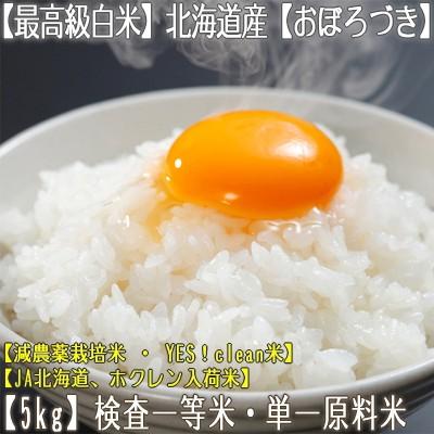 【白米 28年産 送料無料】北海道産 おぼろづき 5k...