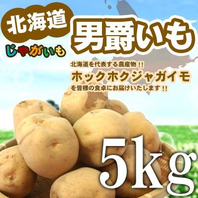 【新じゃが】北海道じゃがいも 男爵いも Lサイズ5...