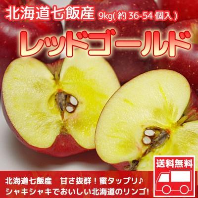 りんご 北海道産 蜜入 レッドゴールド リンゴ 9kg...