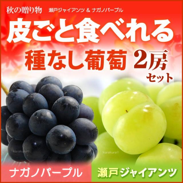 4L限定 瀬戸ジャイアンツ1房×ナガノパープル1房(...