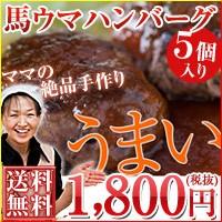 【お試し】【送料無料】ハンバーグファミリー5個...
