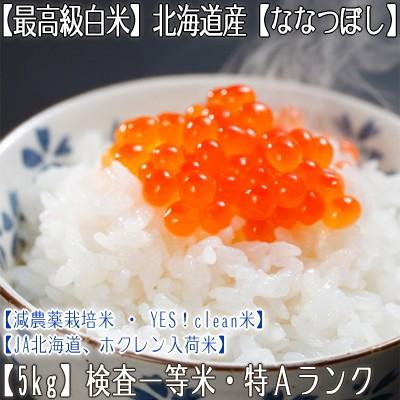 【白米 28年産 送料無料】北海道産 ななつぼし 5k...