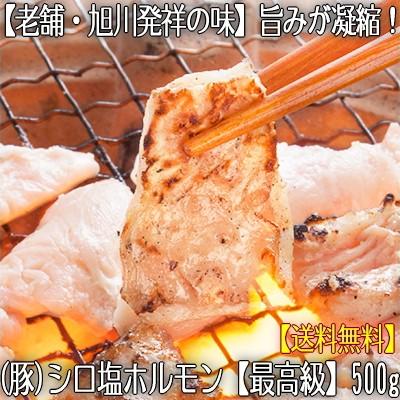 【豚ホルモン シロ 生】塩ホルモン 500g 味付き ...