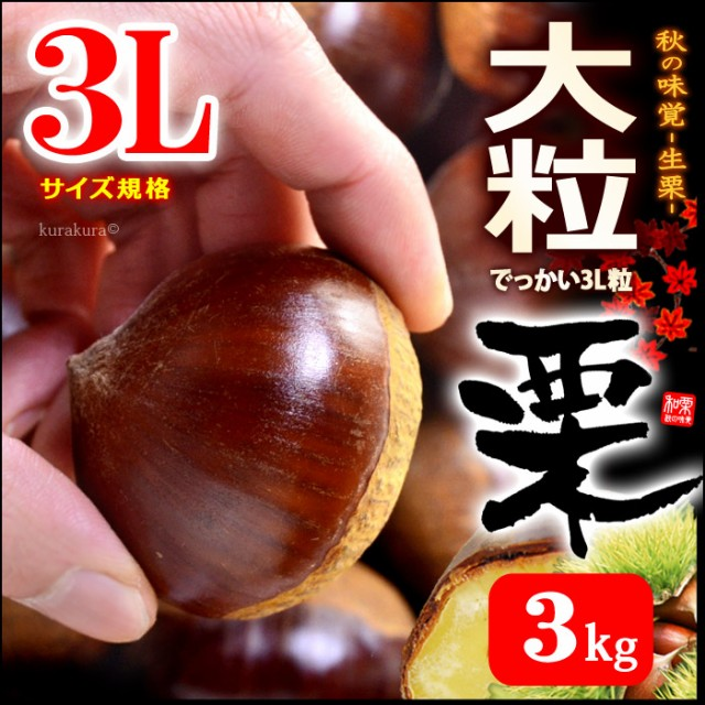 栗3L(約3kg)茨城産 大粒 和栗 くり クリ 送料無料...