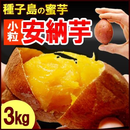 プチ安納芋(3kg)種子島産 サツマイモ さつま芋 蜜...