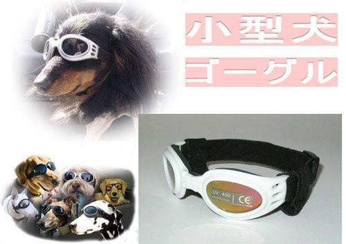 ≪人気商品≫犬用サングラス・ドッグゴーグル◇小...