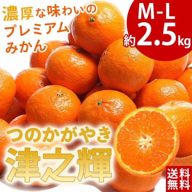 【送料無料】春みかん 津之輝(つのかがやき)5kg...