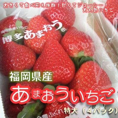 送料無料 福岡県博多あまおういちご特大(4パッ...