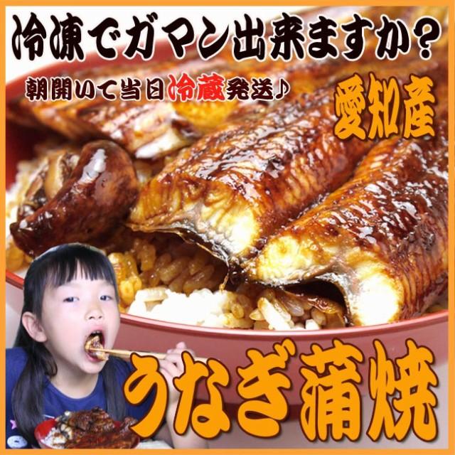 【送料無料】受注焼き上げ!うなぎ蒲焼【大2尾】...