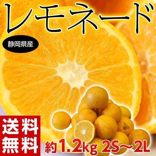 《送料無料》静岡産「レモネード」2S〜2L 約1.2キ...
