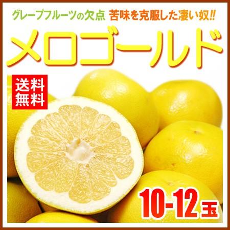 【送料無料】完熟メロゴールド(10-12玉/約7kg)...