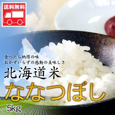 北海道産 ななつぼし5kg 北海道米 ななつぼし お...