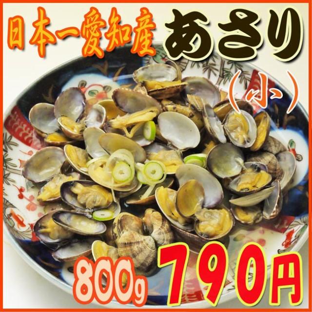 【小粒】あさり[活け800g] 国産砂抜き/愛知産/ぷ...