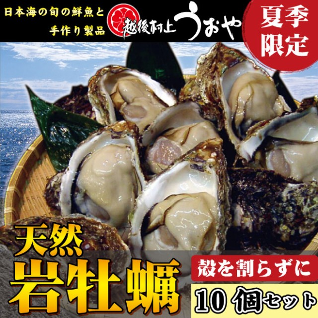 【日本海産】夏の味覚!天然岩牡蠣【10個セット】...