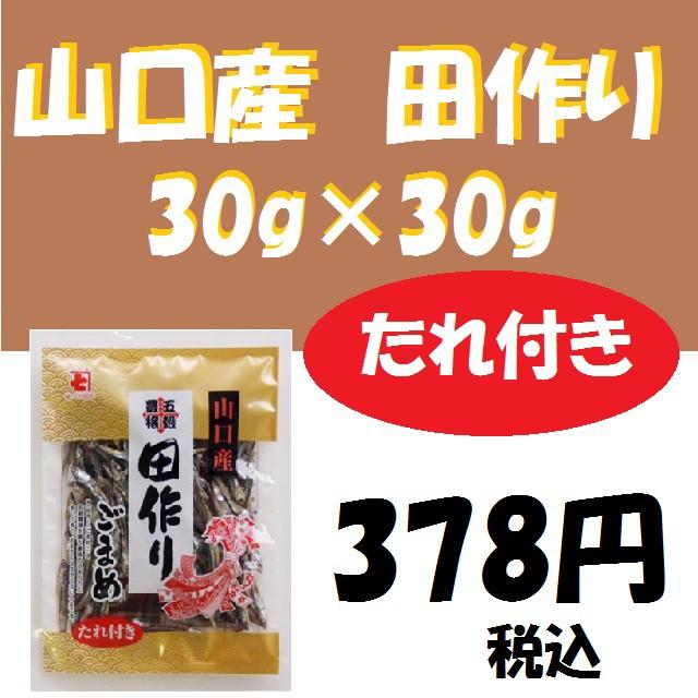 山口産たれ付き田作り30g+30g/かね七/