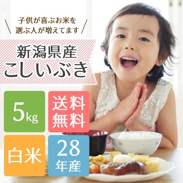 【送料無料】子供に大人気!新潟県産こしいぶき 5...