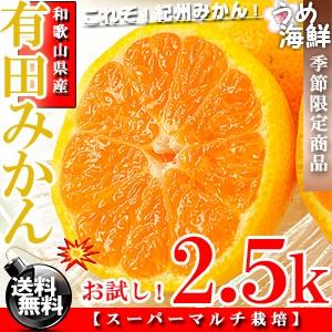 和歌山の高級ブランド♪有田 みかん 2.5k