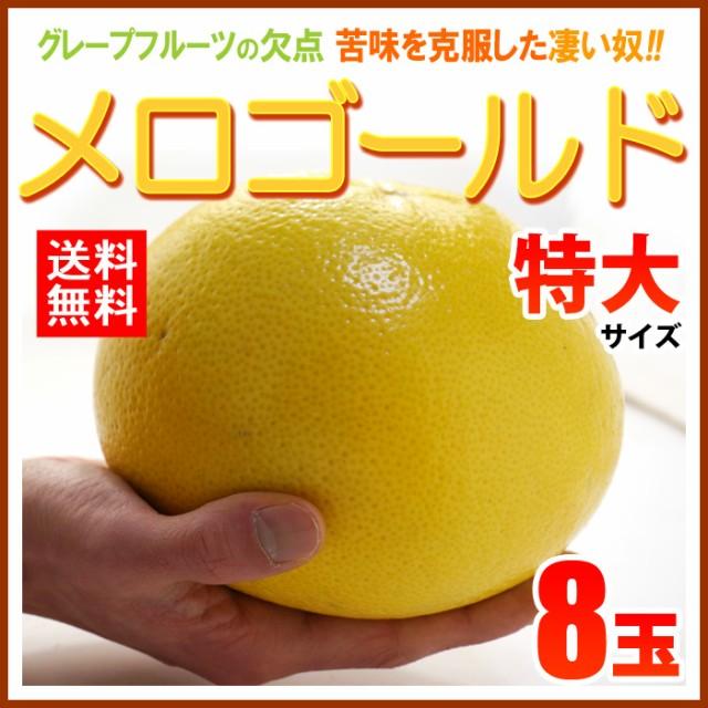 【送料無料】完熟メロゴールド特大(8玉)糖度の...