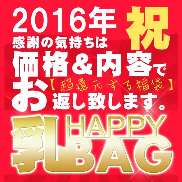 総額¥78,200相当 2016年HAPPY乳BAG♪ Fカップ...