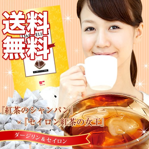 【送料無料】ダージリン&セイロン紅茶 カップ用1...