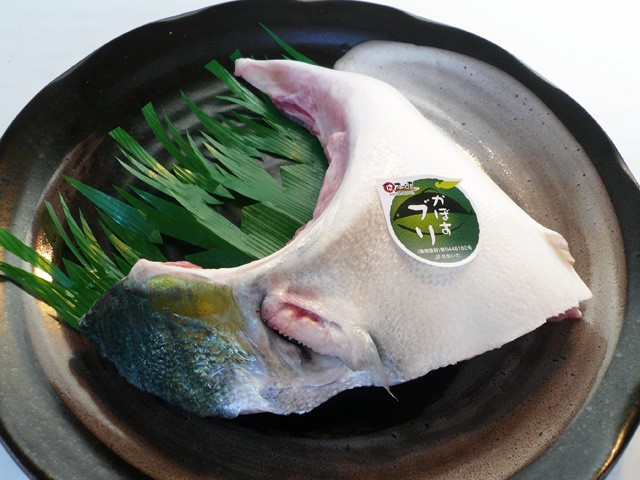 かぼすブリカマ[1切]大分県臼杵産(養殖)★塩焼き...