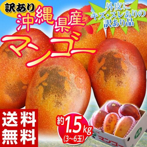 《送料無料》訳有り『沖縄産マンゴー』 大ボリュ...
