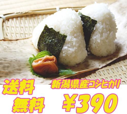 新潟県産 コシヒカリ 白米・玄米 2合