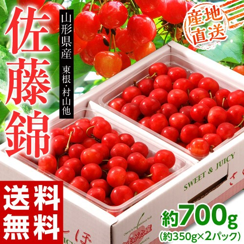 《送料無料》山形県産さくらんぼ 超大粒Lサイズ...