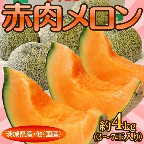 《送料無料》茨城県産・他『赤肉メロン』3〜7玉 ...