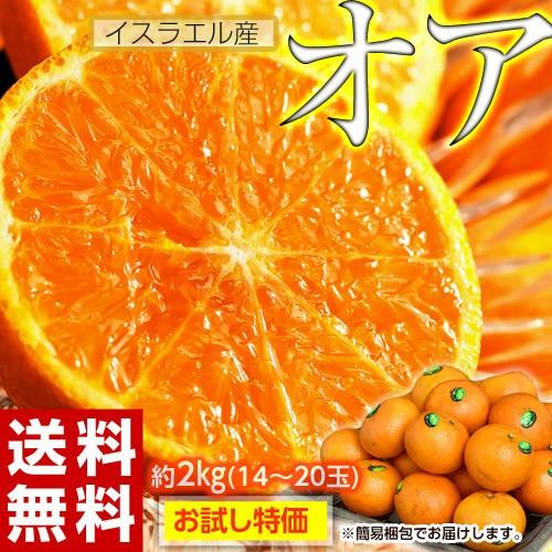 神秘の柑橘 オアオレンジ イスラエル産 約2kg(...