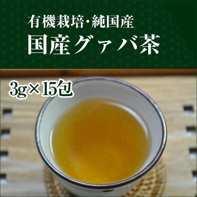 【メール便送無】有機栽培国産グァバ茶 45g (3g...