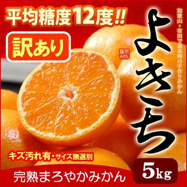 訳あり まろやかよきちみかん(5kg)和歌山有田産 ...