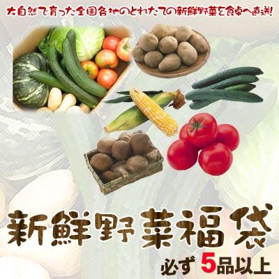 野菜セット 送料無料 新鮮野菜 全国各地の新鮮野...
