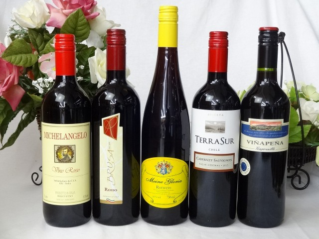 セレクション 赤ワイン 5本セット ( イタリアワイ...
