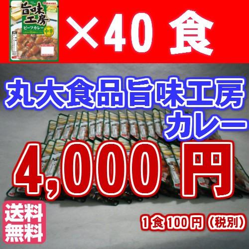 【全国送料無料】丸大食品旨味工房40パックカレー...