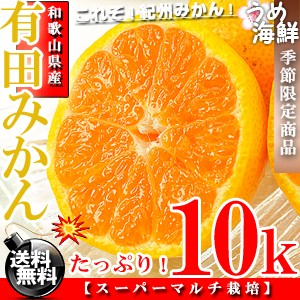 和歌山の高級ブランド♪有田 みかん 10k 小