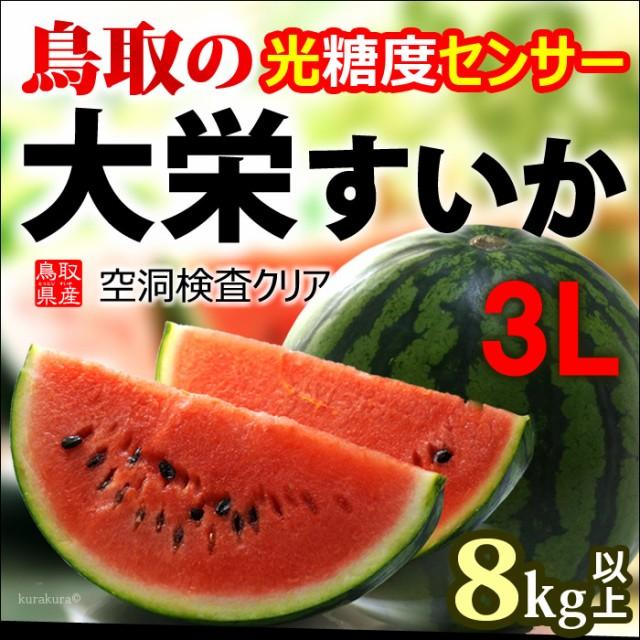 鳥取 大栄すいか 秀品(3L×1玉)鳥取産 スイカ 西...